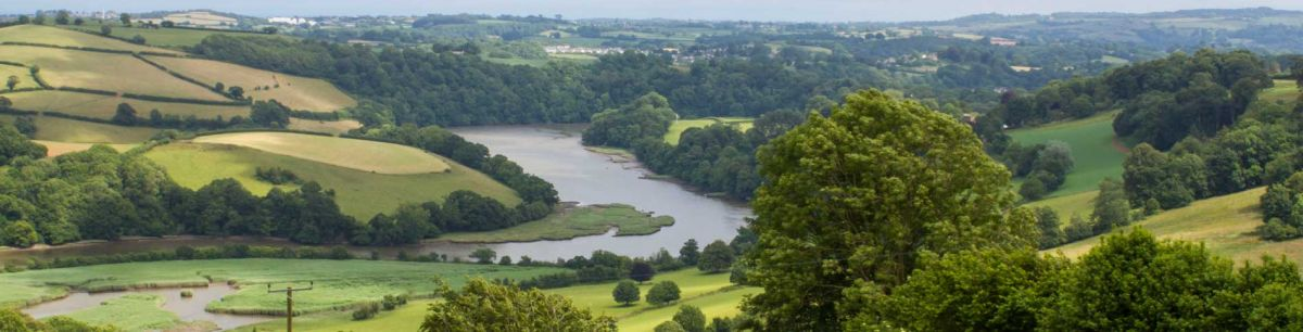 The Sharpham Trust Natural Burial Ground