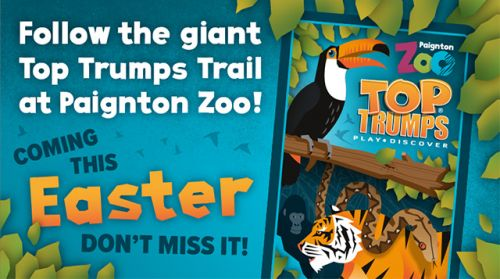 Top Trumps Trail at Paignton Zoo